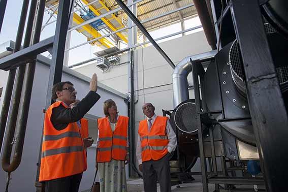 LSole-planta-biomasa-mercado-industrial